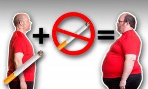 Почему когда бросаешь курить, постоянно хочется есть?